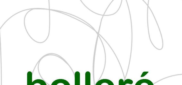 Bolleré 2019 – Terminis i Presentació d'originals